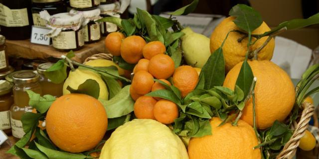 AgruMI. Grande fiera degli agrumi. Storie, saperi e sapori
