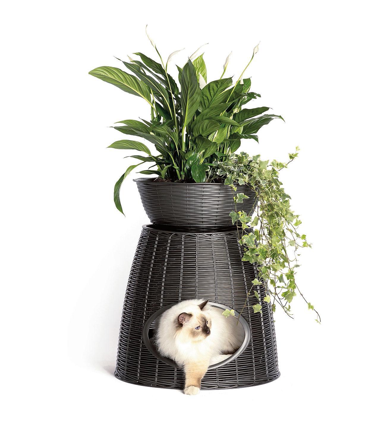 Portavasi per le piante in casa: idee per arredare interni ...