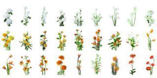 Fiori in vaso: come creare composizioni a effetto