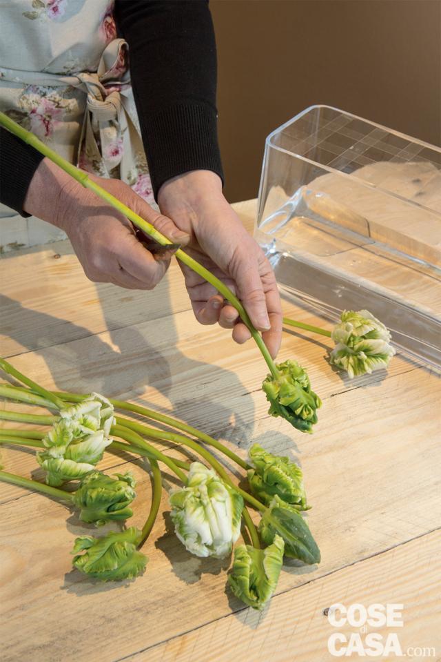 3 Eliminare tutte le foglie dai tulipani con delicatezza per non rompere gli steli. Misurare l'altezza alla quale recidere gli steli, ricordandovi che non devono appoggiare sul fondo del vaso ma restare sospesi. Con un coltellino affilato e tenuto a 45 gradi, recidere, uno per uno, gli steli.