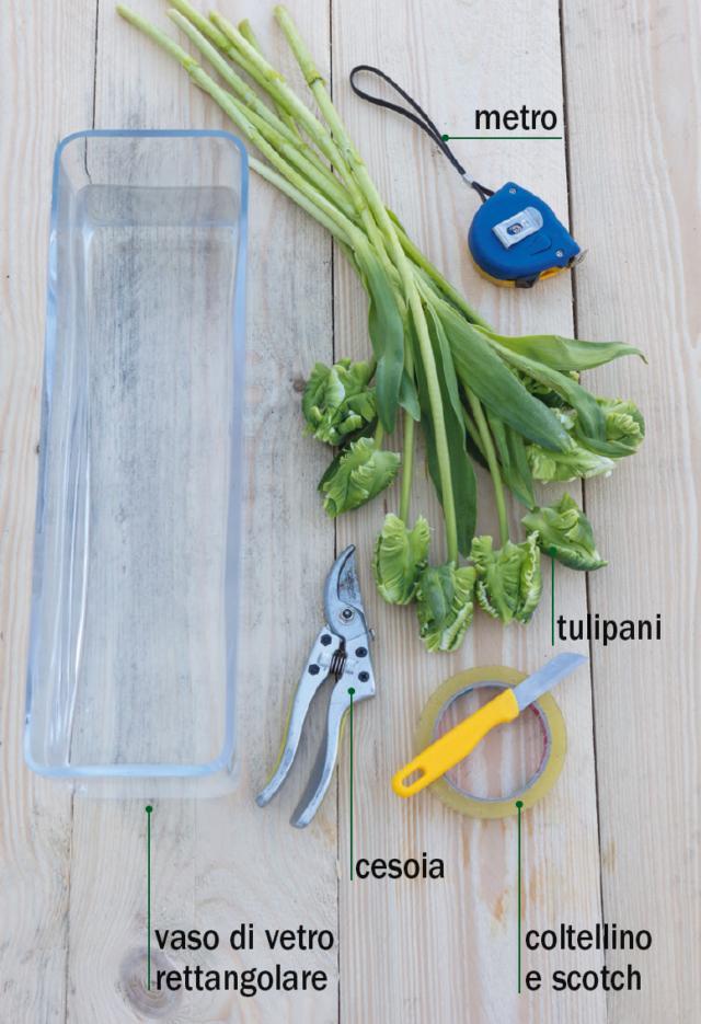 tulipani-occorrente