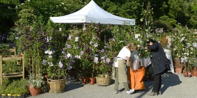 Come fare buoni acquisti alle mostre mercato di giardinaggio
