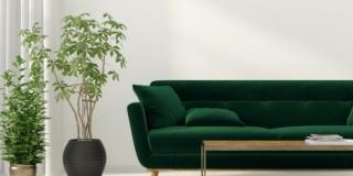 ambientazione con divano e piante per il soggiorno