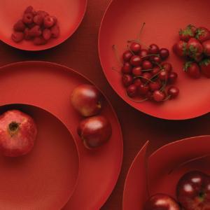 Collezione Texture&Colours di cestini in acciaio con decoro a rilievo colore rosso (autori vari)