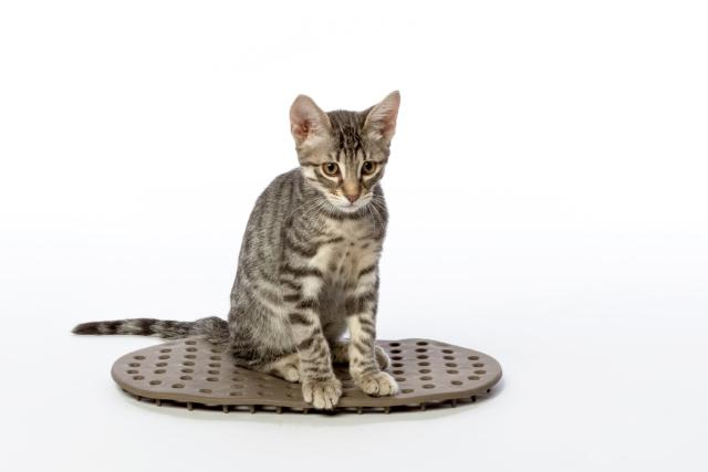 Bama_Comfort Cuscino Animali Domestici
