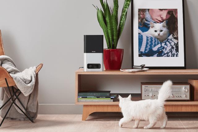 Petcube Petcube Bites Videocamere Wi-Fi Animali Domestici Controllo da Remoto