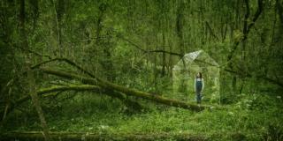Progettare in modo da portare la natura dentro casa. Gli obiettivi di Velux