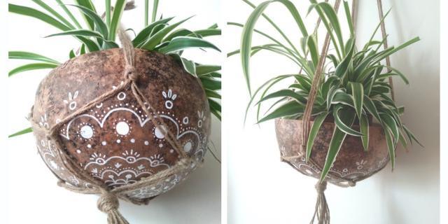 Portavaso: ricavarne uno piccolo dal guscio di un frutto