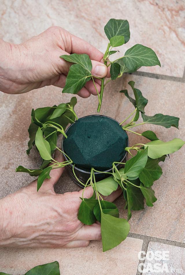3. Creare una base verde in tutte le coppette inserendo l'edera: iniziare dal basso e proseguire verso il centro della spugna.