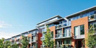 Bonus verde 2021: detrazione fiscale per chi cura il verde di casa