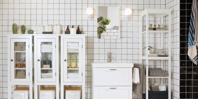 Quali sono le piante adatte al bagno?