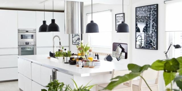 Piante in cucina: quali specie scegliere?