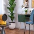 olimpia splendid caldo vintage termoventilatori