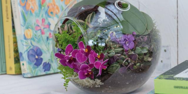 Il giardino racchiuso nella sfera di vetro