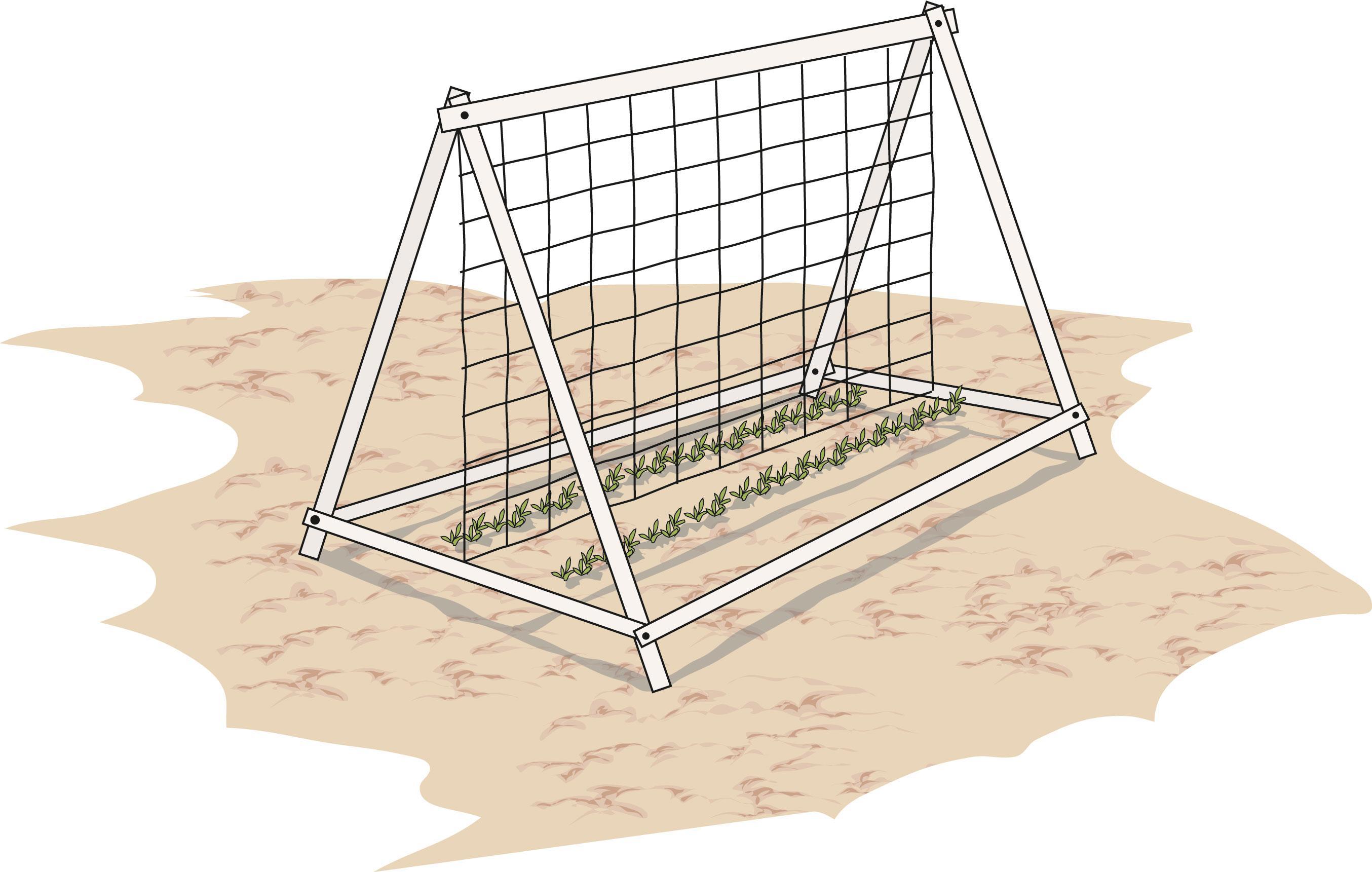 Sostegni Per Pomodori In Vaso nell'orto: i tralicci per gli ortaggi rampicanti - cose di casa