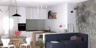 Soggiorno e cucina in un unico ambiente: progetto d'arredo in 3D