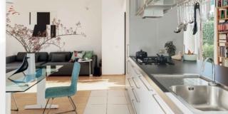 soggiorno con spazi aperti, cucina a isola, cappa, tavolo da pranzo con piano in vetro, sedia azzurra, uccellino, vaso, divano in pelle