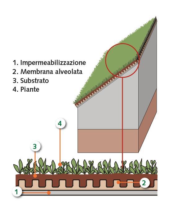 tetto verde capanno attrezzi