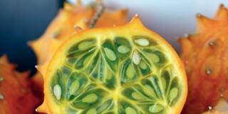 melone cornuto