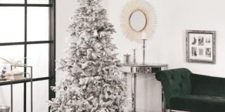 Alberi di Natale per festeggiare anche quest'anno