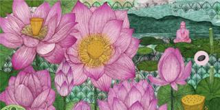 piante del mondo Lotus
