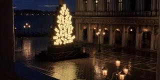 albero di Natale 2020 di Venezia in Piazza San Marco (Immagine: Vela Spa)