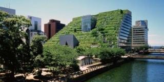 Architettura e natura, a New York un istituto promuoverà benefici e risultati