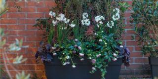 La grande fioriera per il terrazzo