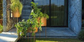 Vasi e portavasi: per arredare al meglio con le piante