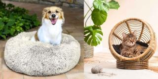 Cucce, ciotole e accessori per cane e gatto