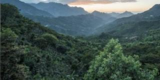 World Environment Day: 5 giugno Giornata mondiale dell'Ambiente