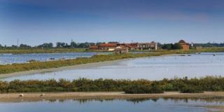Alla scoperta del parco del delta del Po, dove il tempo si è fermato