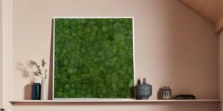 HOMI Community, parete vegetale di Moss Design