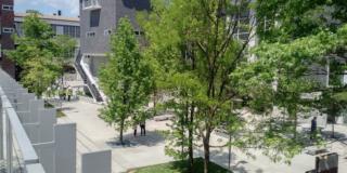 Nel Campus della luce: i nuovi spazi del Politecnico di Milano